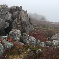 A foggy outcrop brightened by red leaves.